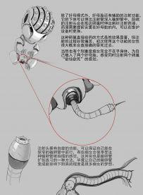 JM系列漫画CG下载 重口风【500P570M】